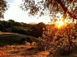 Sunrise behind Mt. Saint Helena.